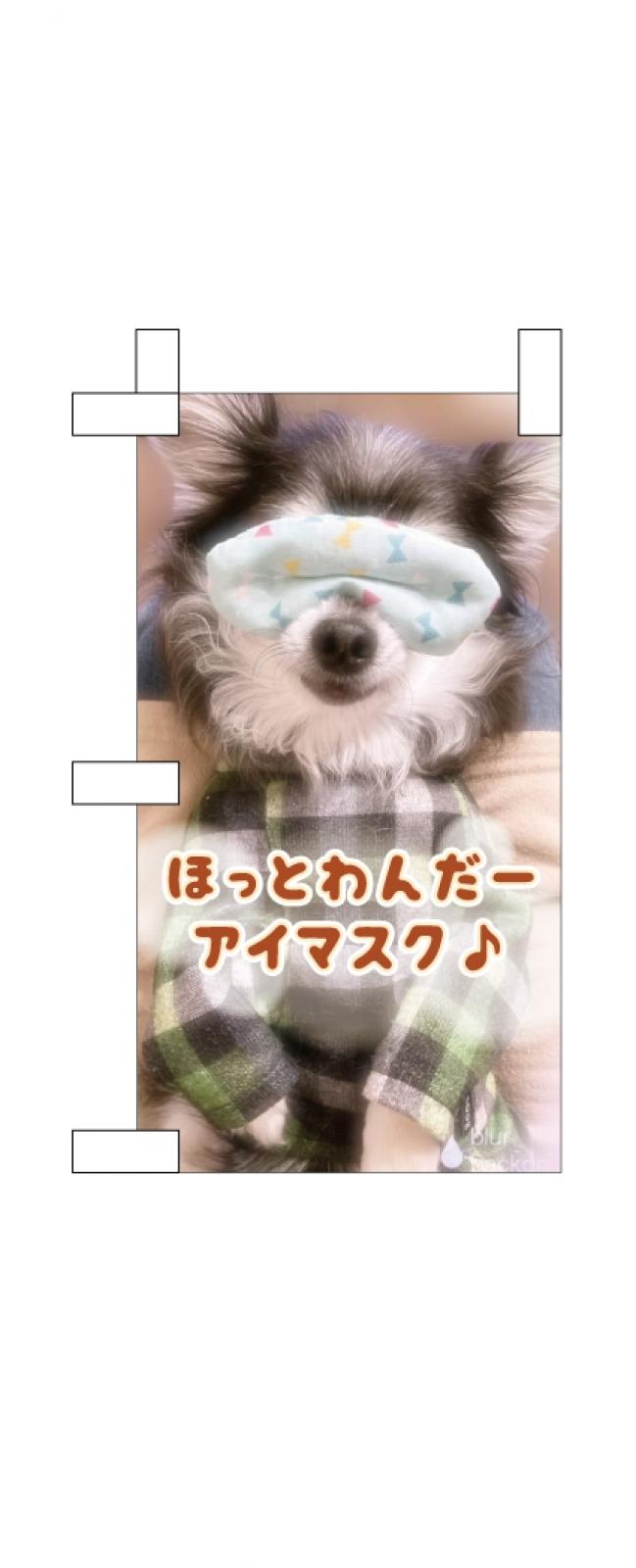 犬用アイマスクののぼり